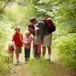 Family Examining Bug On Nature Hike